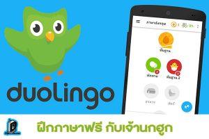รีวิวแอพ Duolingo ฝึกภาษาฟรี กับเจ้านกฮูก l รีวิว แอพพลิเคชั่น duolingo